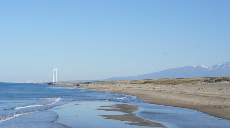 卒原発社会に向けて風力発電における環境アセスを