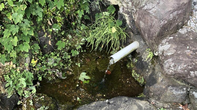 健全な水循環と清流の再生 八王子市の水循環計画を新たなステージに