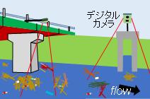 flow01.png